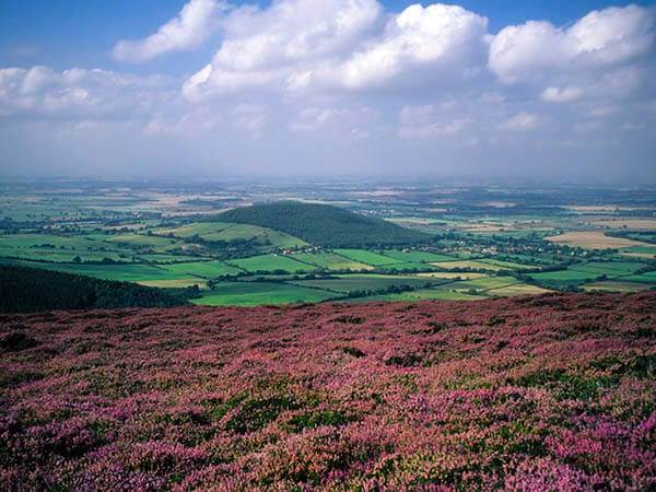 North Yorkshire Moors Image